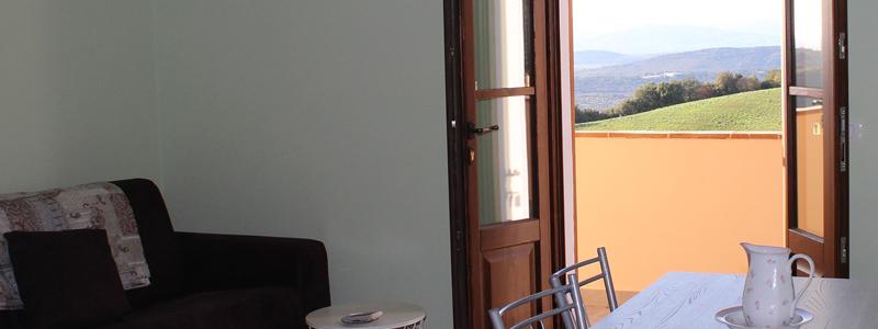Appartamento Olivastra Seggianese, cucina completa, aria condizionata, wi-fi. Piscina, Agriturismo Azienda Agricola L'Anichino Grosseto Toscana